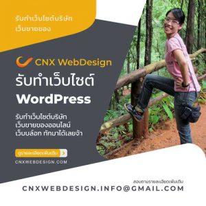รับทำเว็บไซต์ WordPress ทีดีมีประกัน